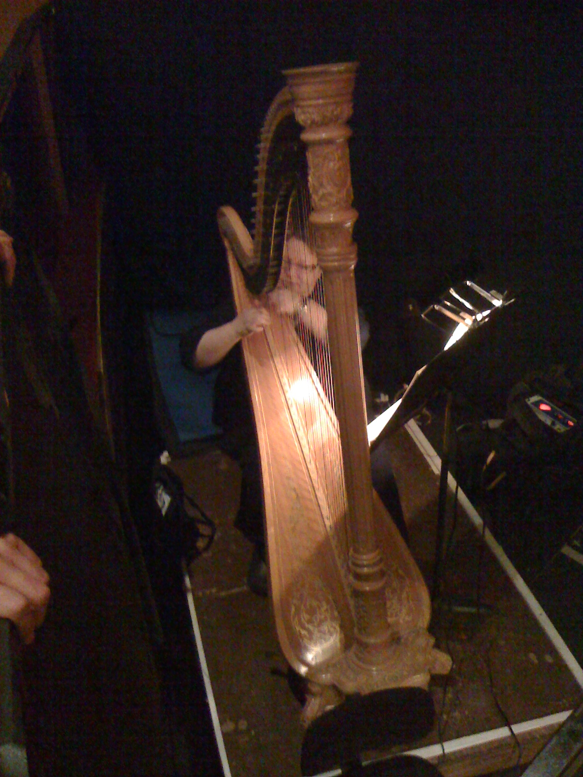 A Harpist Warms Up