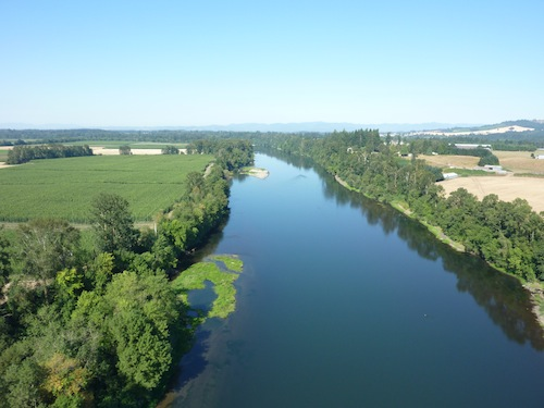 Willamette River By Air